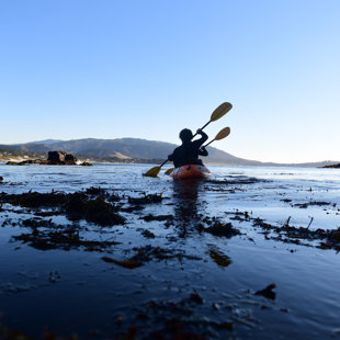 Paddling out of Cripple Cove